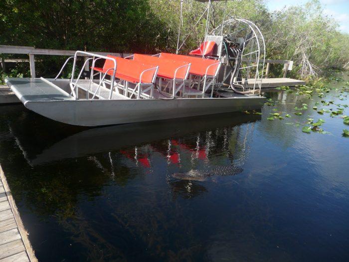 Notre transport à la recherche des alligators