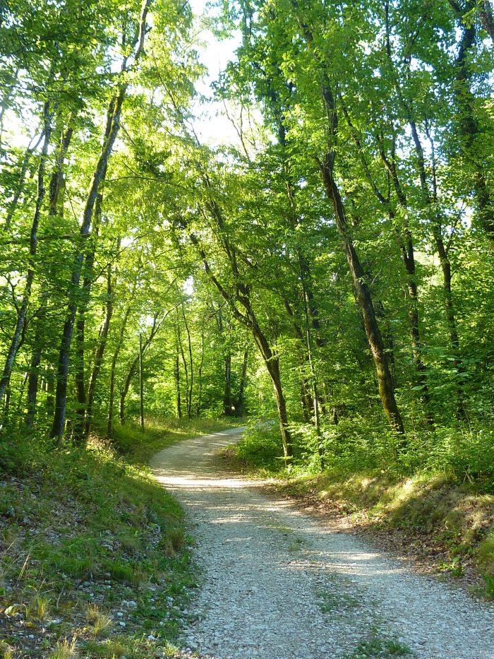 Le chemin est ombragée, et ça, on aime !